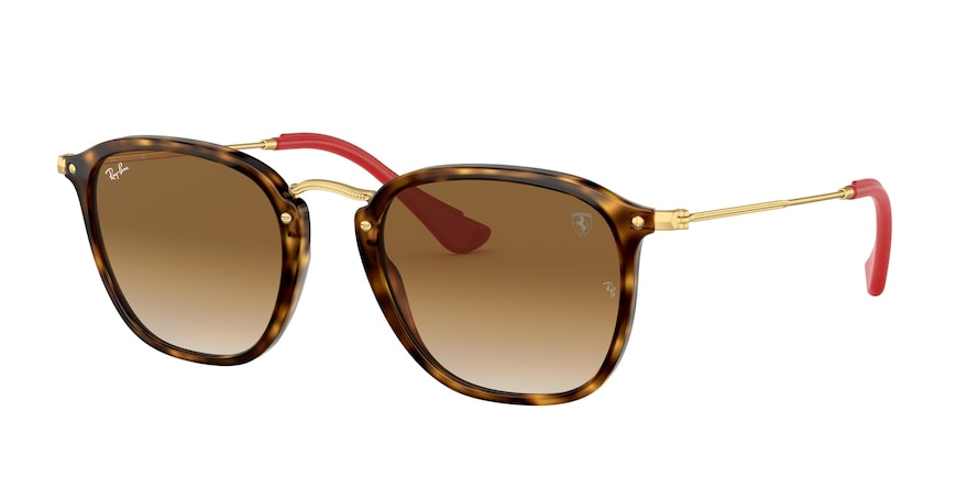 Ray-ban 0RB2448NM
